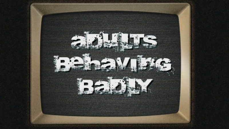 Adults Behaving Badly